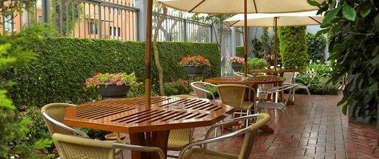 Hotel Runcu Miraflores: Terraza