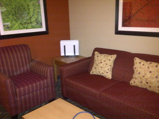 Comfort Suites Airport : Sofa and chair.