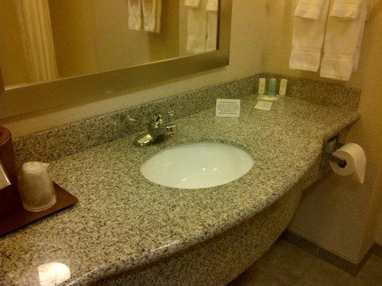 Comfort Suites Airport: Vanity in bathroom
