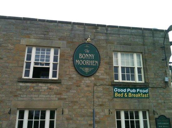 The Bonny Moorhen
