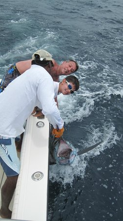 Tamarindo Beach: Blue Marlin in the Kingpin