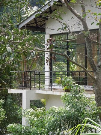 Honeypot Restaurant & Guest House: SIDE VIEW OF RESTAURANT