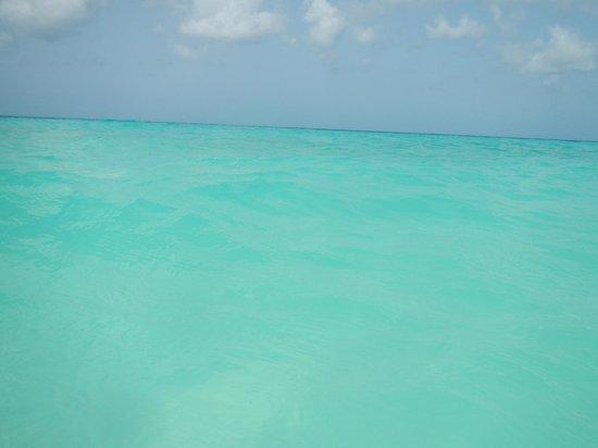 Divi Aruba All Inclusive: el mar