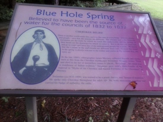 Red Clay State Historic Park: blue hole spring