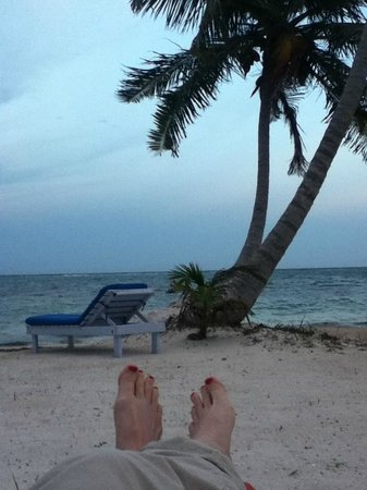 Blackbird Caye Resort: Outside your cabana