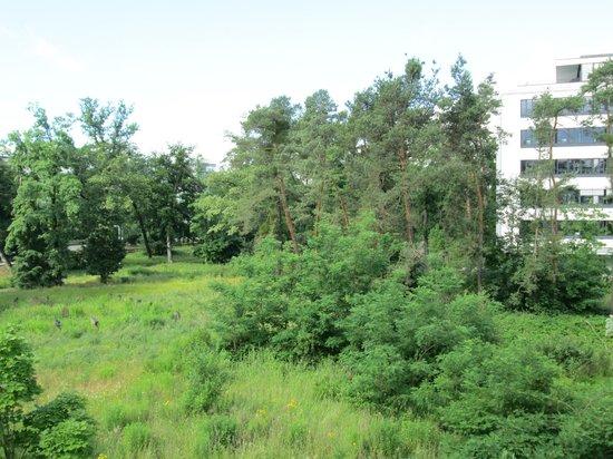 B&B Hotel Darmstadt: grüne Aussichten
