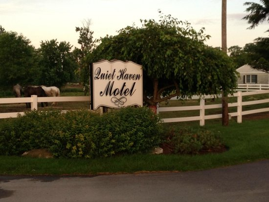 Quiet Haven Motel: View from the road