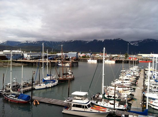 Harbor 360 Hotel: Lots of interesting boats & yachts