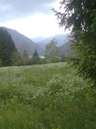 Lago di Ledro: prati in fiore