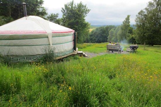 Strawberry Skys Yurts: Strawberry Sky Yurt