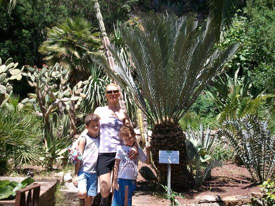 Camping Village Rosselba le Palme: Palma Azzurra