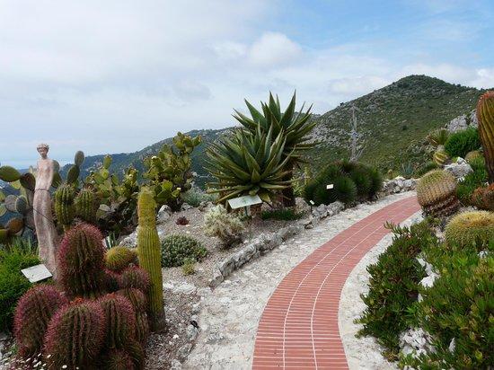 Botanischer Garten Eze, schöne Aussichten - Picture of Le Jardin ...