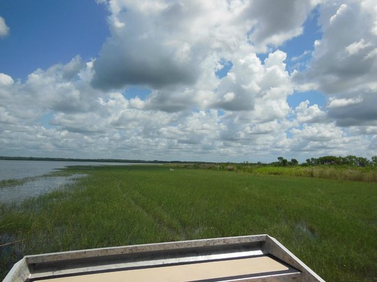 Loughman Lake Airboat Rides: looking forward over the lake