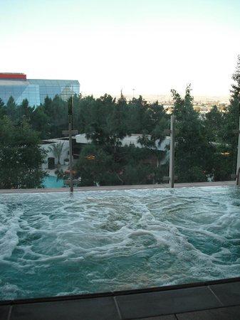 The Spa & Salon at Aria : Co-Ed Infinity pool/hot-tub