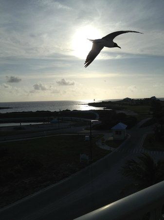 Grand Isle Resort & Spa: Sunrise