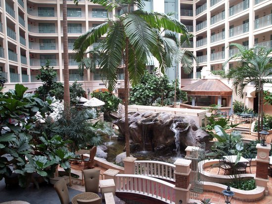 Sheraton Suites Fort Lauderdale at Cypress Creek: Interior Courtyard Inside Hotel