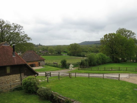 Colliers Farm B&B: From our bedroom (and bathroom) window