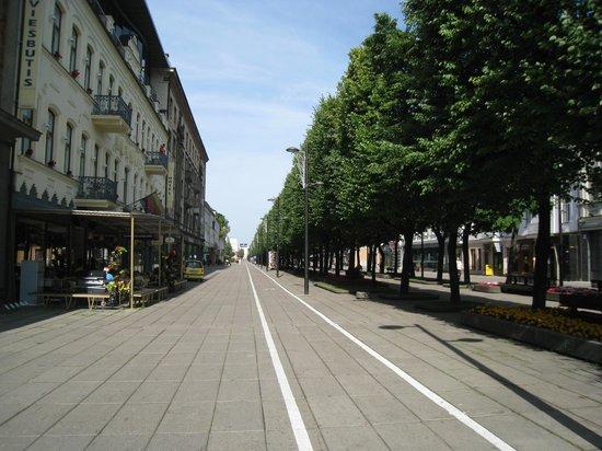 Kaunas Hotel: avenue de la liberté
