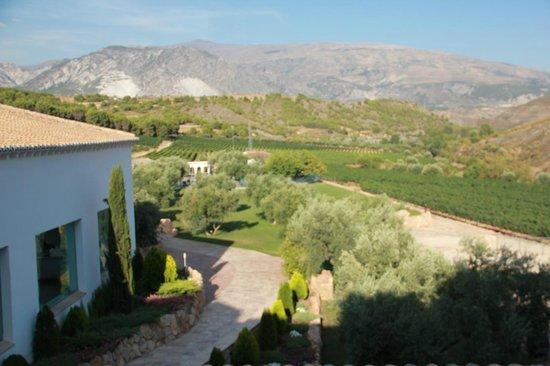 Jardin picture of hacienda senorio de nevada villamena for Jardin nevada
