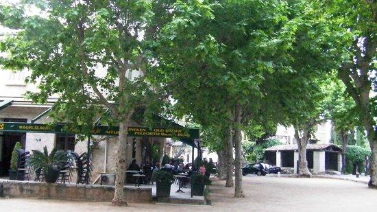 Le Café de la Place : Delightful scene under the Planes at the Cafe de la Place