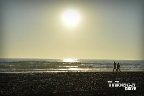 Tribeca Playa