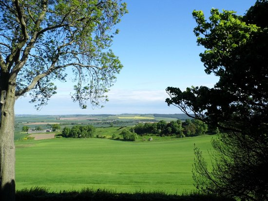St Andrews Country Lodges: View from the farmhouse b & b bedroom