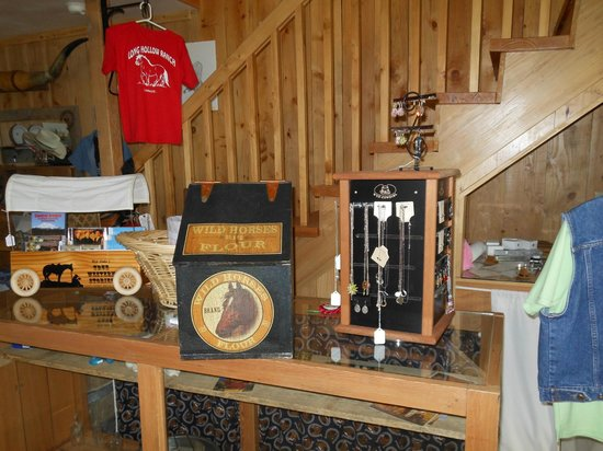 Long Hollow Guest Ranch: Gift shop was fantastic and we bought some very nice items.