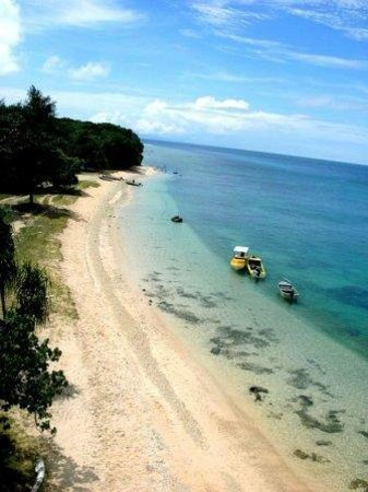 Santo Island Dive and Fishing: Millon Dollar Point