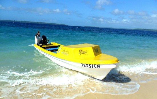 Santo Island Dive and Fishing: Banana Boats