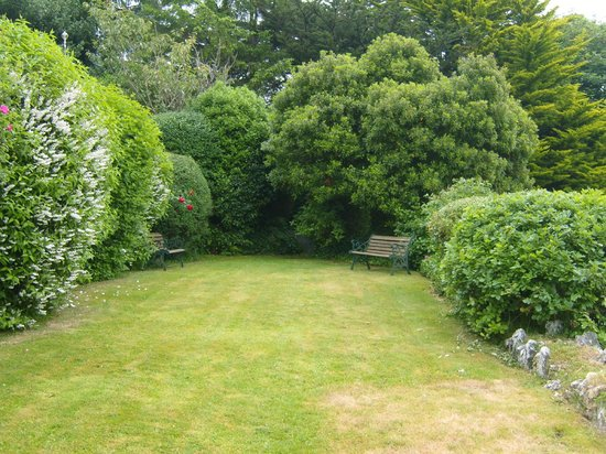 The Elmfield: Part of grounds