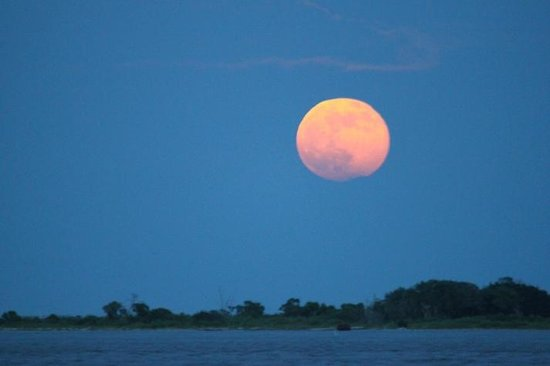 American Fish Company: Moon rise over the Cape Fear