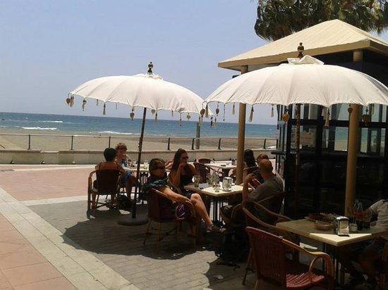 Lolas Estepona: Playa Rada from the terrace, so close
