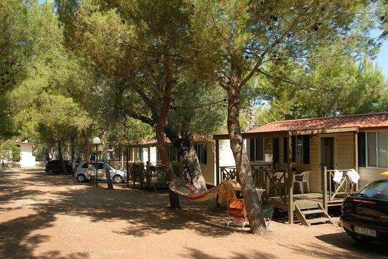 Camping Lama Le Canne: Le Casette