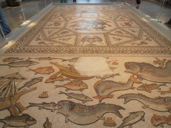 Penn Museum: Roman mosaic from Lod Israel