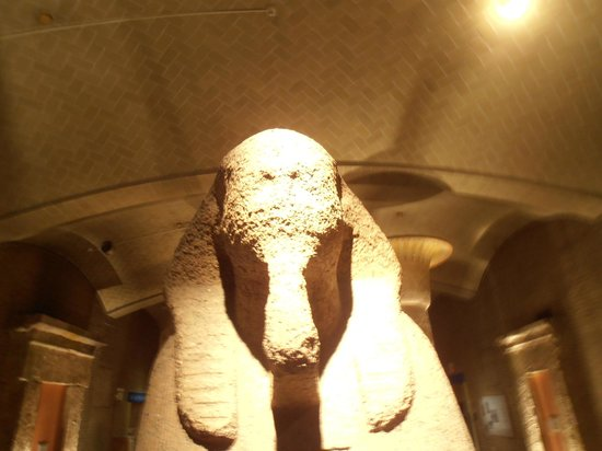 Penn Museum: Sphinx face