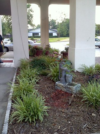 Hampton Inn Jonesville/Elkin: Portion of exterior garden