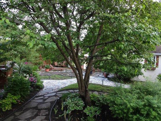 Maison Dufour & Bouchard: backyard