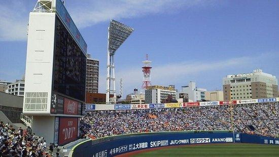 Yokohama Stadium: スタンドからの眺望2