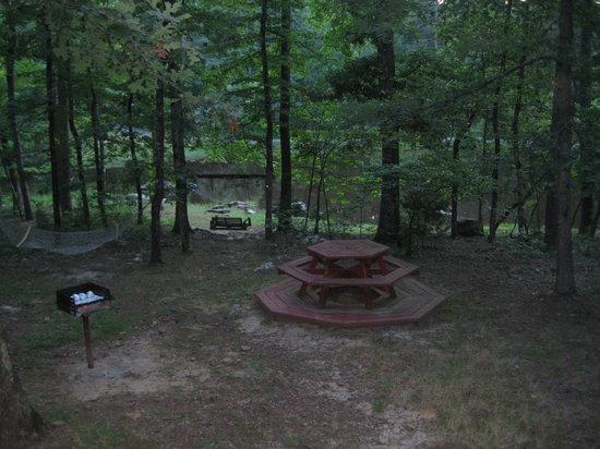 Tanyard Springs Cabins : Woodsman cabin: yard