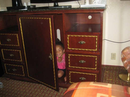 Days Inn Hornell NY: Fun cabinet (probably used to hold the fridge)