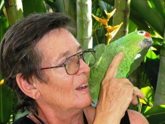 Hotelito Del Mar: Sally Ramirez and her parrot