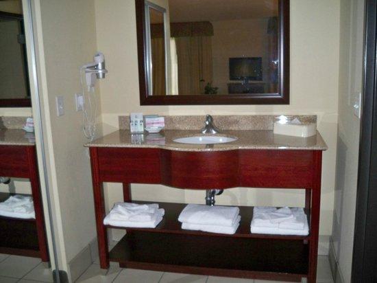 Hampton Inn & Suites Denver Littleton: The room sink