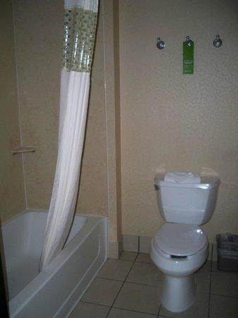 Hampton Inn & Suites Denver Littleton: Bathroom