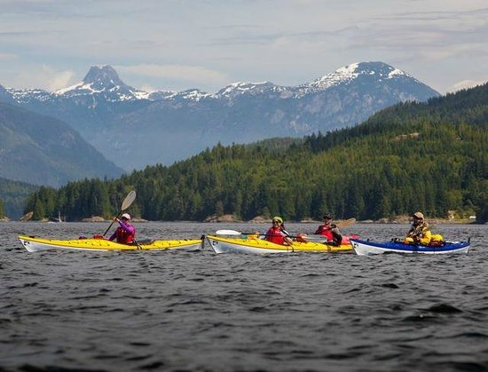 Grey Wolf Expeditions - Day Tours: Sea Kayaking Tours Vancouver Island British Columbia, Canada