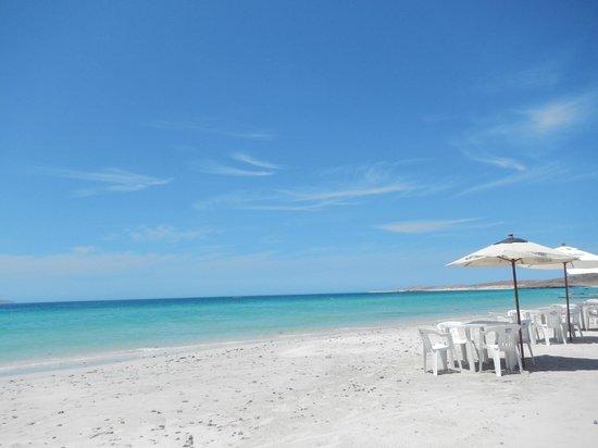 Isla Espiritu Santo: Playa El Tecolote, se toma la lancha para ir al Tour de Espiritu Santo