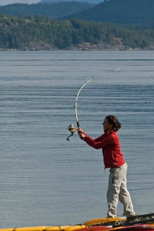Grey Wolf Expeditions - Day Tours: Orca Camp Fishing