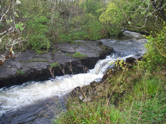 Carrick Bed and Breakfast: water running right behind the B&B