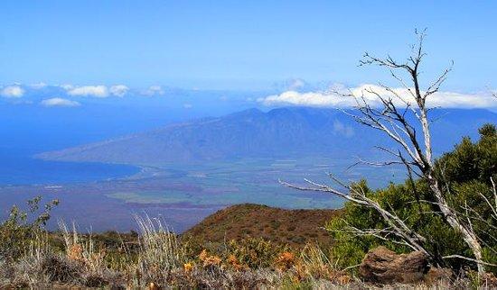 Kahana Falls : Be sure to drive up Haleakala!