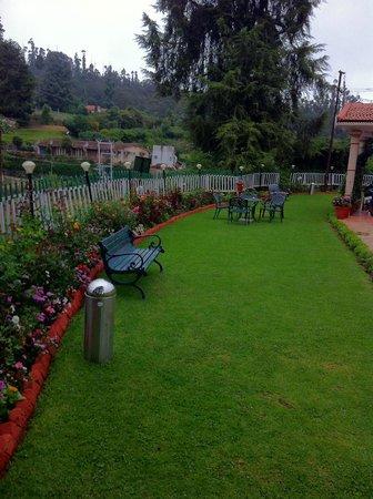 Bouganvilla: Lawn