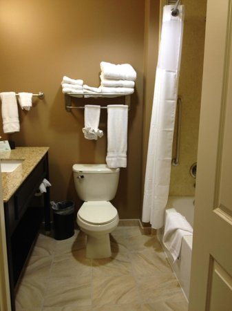 Best Western Plus College Park Hotel : Bathroom
